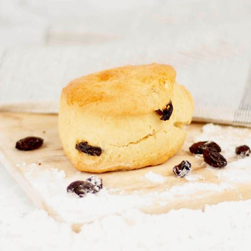 Picture of Raisin Scone